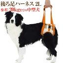 犬 歩行 介護用品(歩行補助 後ろ足 ハーネス 2L)高齢犬・シニア・老犬・犬用