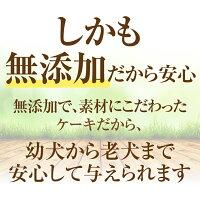 犬用似顔絵ケーキ(鶏ミートローフ)無添加誕生日ケーキ【冷凍】