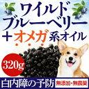 犬の白内障・目・視力に(美味しい目薬・ワイルド ブルーベリー)無添加のワイルド ブルーベリー おやつやトッピングに…