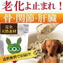 犬の無添加・サプリメント(みらいのヒトサジ)【送料無料】猫・犬用 肝臓・骨・関節・ダイエット・アレルギーに天然のサプリ(老化・免疫力でも人気)