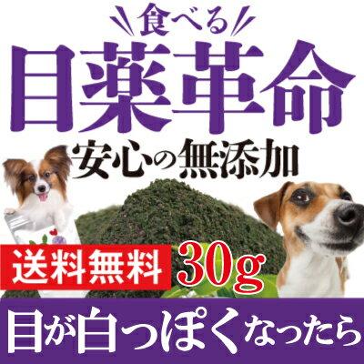 犬 猫用 目のケア サプリ(食べる 目薬 革命 30g)無添加 ブルーベリー 配合 粉末【メール便 送料無料 】