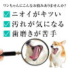 Eat with additive-free natural supplements dog bad breath and Tartar toothpaste revolution 50 g gum disease and tooth decay supplements for dogs (cats too) dental care / for dogs supplement / cat supplements / cat / cat / toothbrush / toothpaste / mouse