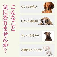 犬用・結石のサポート・サプリ