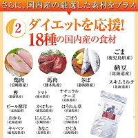 無添加・ドッグフード・ダイエット・体重管理