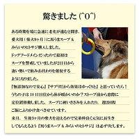 無添加・国産犬の手作りご飯(馬うまスープ粉末)ウコン・馬肉で出来たドッグフード【メール便送料無料代金引換不可】