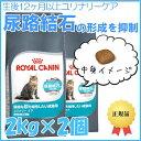 最大500円OFFクーポン配布中!ロイヤルカナン 猫 FCN ユリナリー ケア 2kg×2個セット ≪正規品≫ 健康な尿を維持した…