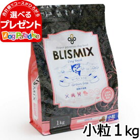 ブリスミックス グレインフリー サーモン小粒1kg