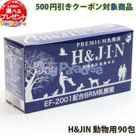 【500円引きクーポン】Premium乳酸菌H&JIN(動物用90包)