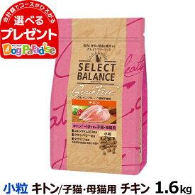 セレクトバランス グレインフリー キャット キトン チキン 小粒 1.6kg(猫 グレインフリー 穀物不使用 子猫 仔猫 授乳期 皮膚 被毛 関節 乳酸菌)
