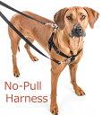 ノンプルハーネス+専用リードセット Sサイズ  ペット・ペットグッズ 犬用品 首輪・胴輪・リード 胴輪・ハーネス しつけ 小型犬