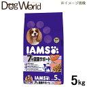 *正規品* アイムス 犬用 7歳以上 ラム&ライス 小粒 5kg