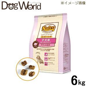ナチュラルチョイス子犬用超小型犬〜中型犬用チキン&玄米6kg