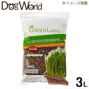 エイムクリエイツ グリーンラボ 犬と猫が好きな草の栽培用土 3L