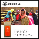 エチオピア イルガチェフェ| コーヒー 高級 ギフト コーヒーギフト コーヒー豆 ドリップコーヒー 土居珈琲 珈琲 珈琲…
