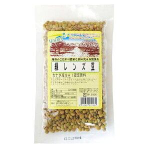 緑レンズ豆