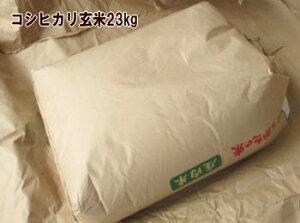 2年度山形県産庄内コシヒカリ23kg 玄米 一等米