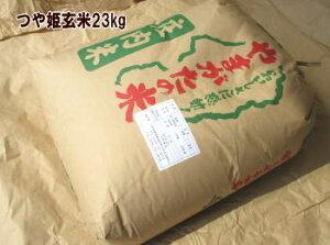 2年度山形県産庄内つや姫23kg 玄米 一等米