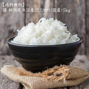 【送料無料】 藤 新潟県 魚沼産 こしひかり(国産)5kgx1袋