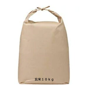 [国産玄米][送料無料] 京都産 ヒノヒカリ 10kg 玄米 新米[京都府 ]