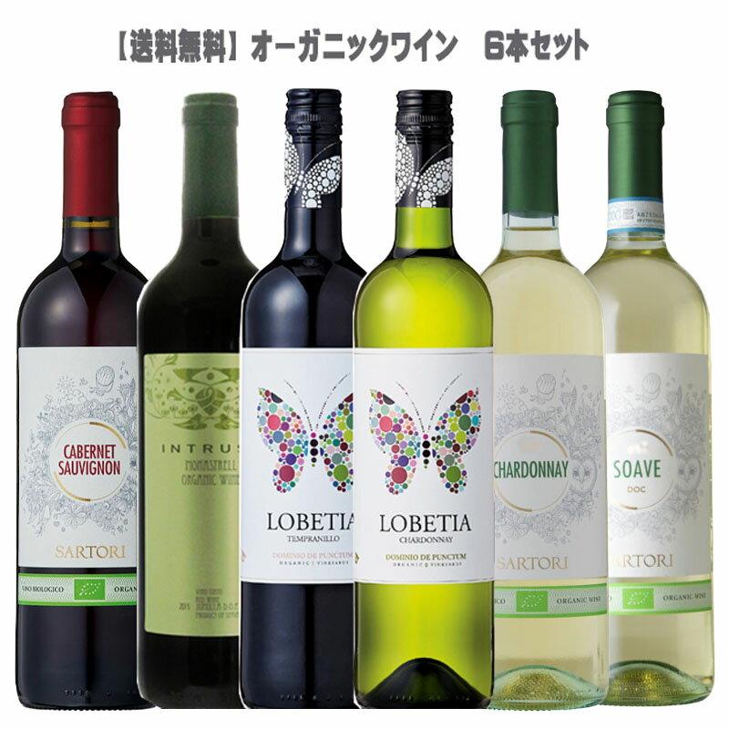 【送料無料】オーガニックワイン6本セット【 大人気セット BIO ビオ 有機栽培 イタリア スペイン 】