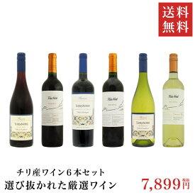 【送料無料】チリ産ワイン6本セット! 選び抜かれた厳選ワイン!コスパ抜群【ワインセット/チリ/コストパフォーマンス/パーティー/ギフト/デイリーワイン】