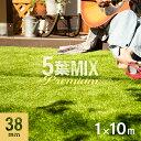 5葉ミックス リアル人工芝 ロール 1m×10m 送料無料 芝生 ガーデンターフ マット シート U字ピン付き ガーデニング DI…