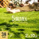 5葉ミックス リアル人工芝 ロール 2m×10m 送料無料 芝生 ガーデンターフ マット シート U字ピン付き ガーデニング DI…