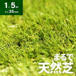 人工芝ロール1m×5m芝丈35mm送料無料人工芝芝生マット人工芝生人工芝マット人工芝ロール芝生ロールタイプ固定ピン庭ベランダテラスバルコニーガーデニングガーデン屋上緑化u字ピン水はけ