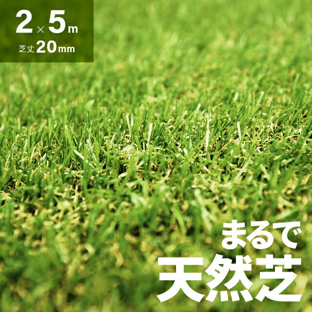 人工芝 ロール 2m×5m 芝丈20mm 送料無料 人工芝 芝生マット 人工芝生 人工芝マット 人工芝ロール 芝生 ロールタイプ 固定ピン 庭 ベランダ テラス バルコニー ガーデニング ガーデン 屋上緑化 u字ピン 水はけ