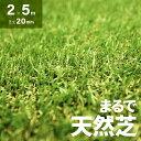 人工芝 ロール 2m×5m 芝丈20mm 送料無料 人工芝 芝生マット 人工芝生 人工芝マット 人工芝ロール 芝生 ロールタイプ …