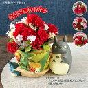 【ジブリ グッズ】となりのトトロ プランター&母の日造花アレンジセット(葉っぱあつめ)【ジブリ グッズ】【ととろ】…