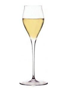 バレリーナ シャンパン チューリップ B (トール) (ロブマイヤー) Ballerina Champagne Tulip B (Lobmeyr) 【正規輸入品】【手作り】