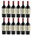 エニーラ (ベッサヴァレー・ワイナリー) 【12本セット】 Enira (Bessa valley winery) 【12bottle set】【現行ヴィンテージ】【うち飲…