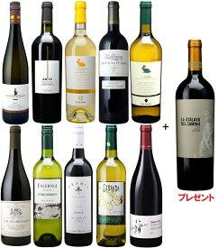 【輸入元協賛】採算度外視シニアソムリエ厳選ワインセット Aコース 赤白ワインセット10本+1本おまけ付き