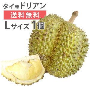 ドリアン モントーン種 タイ産 Lサイズ 1玉 生鮮 フレッシュ 生 果物