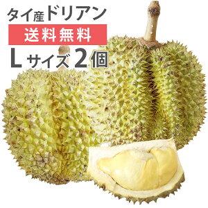 ドリアン モントーン種 タイ産 Lサイズ 2玉 生鮮 フレッシュ 生 果物