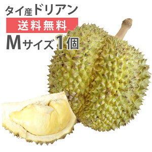 ドリアン モントーン種 タイ産 Mサイズ 1玉 生鮮 フレッシュ 生 果物