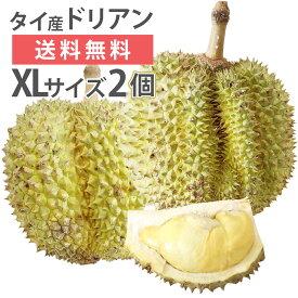 毎週輸入中!準備ができ次第出荷 ドリアン タイ産 XLサイズ 2玉 生鮮 フレッシュ 生 果物