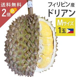 毎週輸入中!準備ができ次第出荷 フィリピン産 ドリアン Mサイズ 1玉 約1.5〜2kg 生鮮 生 生ドリアン 送料無料 durian プヤット種