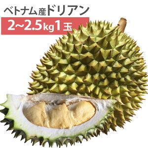 毎週輸入中!準備ができ次第出荷 ベトナム産 ドリアン Lサイズ 1玉 2kg〜2.5kg 生鮮 生 生ドリアン 送料無料 durian RI6種 または モントーン種 など