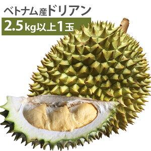 毎週輸入中!準備ができ次第出荷 ベトナム産 ドリアン XLサイズ 1玉 2.5kg以上 生鮮 生 生ドリアン 送料無料 durian RI6種 または モントーン種 など