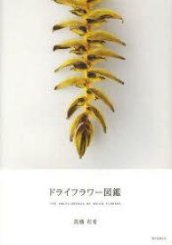 【新品】【本】ドライフラワー図鑑 高橋有希/著