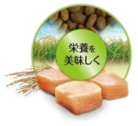 【新品】 ピュリナ ワン キャット 子ねこ用 チキン 2.2kg