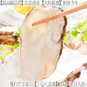 【送料無料 広島県産 カキ】【特大】広島地御前地域 冷凍剥き牡蠣 3kg【獲れたて】職人がIQF急速冷凍 鮮度抜群!【高品質】色々なお料理に 好みの量を簡単調理。【北海道ブランド】BBQ バタ