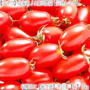 【トマト ミニトマト 北海道産 送料無料】【アイコ 完熟 L】北海道東川産 とまと 3kg箱【空輸】収穫日発送【翌日】お届け!鮮度が違う。【秀品】北の大地の香りと、上品な甘みをお届け!