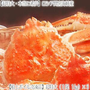【ズワイガニ 3kg 最高級 送料無料】【ロシア産 超特大 姿】ずわいがに 1kg×3尾【ズワイガニ 姿】希少サイズ、本当に大きい!【活蟹】を船上ボイル急速冷凍、絶妙な塩加減。【北海道ブラン