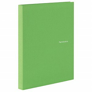 セキセイ レミニッセンス ミニポケットアルバム ポストカード・KG・ハガキサイズ80枚 ポケット黒(グリーン)