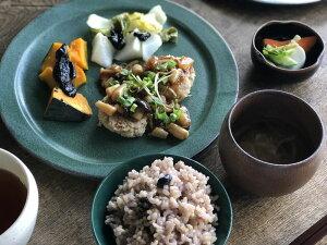 翠(SUI)大皿25cm食器皿プレートおしゃれ和食料理