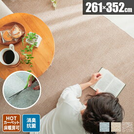 絨毯 ラグ 6畳 ラグマット カーペット 夏用ラグ カットできる 北欧 シンプル 子供部屋 リビング 毛足が短い 長方形 262×352 六畳 日本製 ナチュラル 夏用 無地 大判 切れる