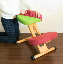 替えカバー カバー 椅子カバー 子供 大人 子ども 子供用 子ども用 椅子 チェアチェアー クッション 高さ調節 姿勢矯正 姿勢 食事 バランスチェア ダイニング腰痛 学習 勉強 ピンク ブルー